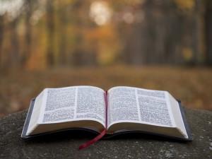 Bible-Open-001